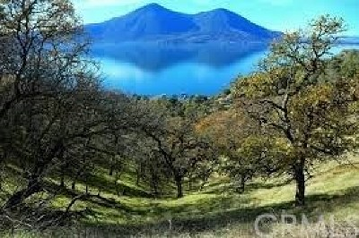 Lower Lake Residential Lots & Land For Sale: 9000 S State Hwy. 29