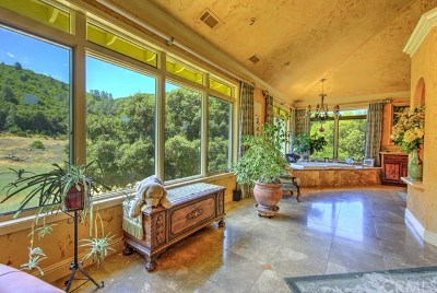 Kelseyville Single Family Home For Sale: 5395 Konocti Road