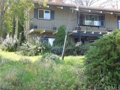 Kelseyville Single Family Home For Sale: 4604 Hawaina Way