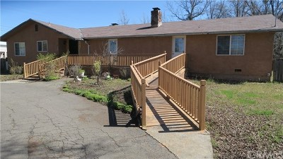 Clearlake Single Family Home For Sale: 14932 Burns Valley Rd