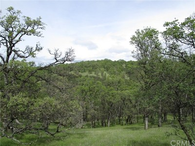 Clearlake Residential Lots & Land For Sale: 2122 Ogulin Canyon Road