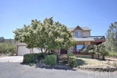 Kelseyville Single Family Home For Sale: 9545 Penson Court