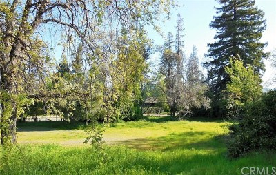 Lakeport Residential Lots & Land For Sale: 295 9th Street