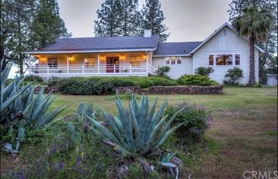 Lower Lake Single Family Home For Sale: 20144 Jerusalem Grade