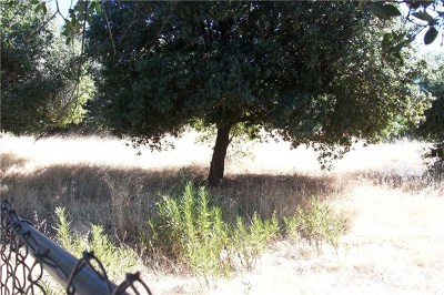 Clearlake Residential Lots & Land For Sale: 3592 Pomo Road