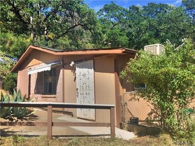 Clearlake Oaks Single Family Home For Sale: 11849 Widgeon Way