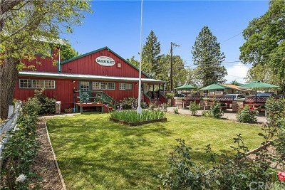 Lake County Commercial For Sale: 1970 Big Valley Road