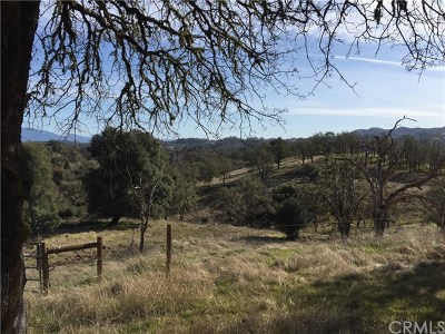 Upper Lake Residential Lots & Land For Sale: 1390 W State Hwy 20