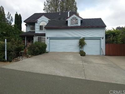 Hidden Valley Lake Single Family Home For Sale: 15632 Little Peak Road