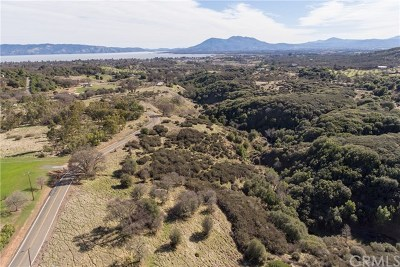 Lakeport Residential Lots & Land For Sale: 2157 Riggs Road