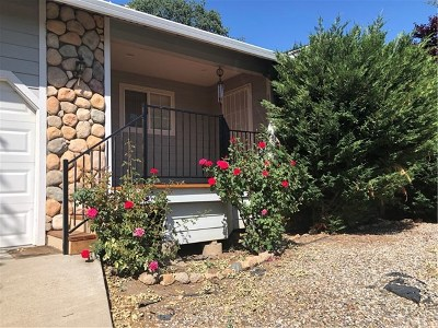 Clearlake Single Family Home For Sale: 15514 Highlands Harbor Road