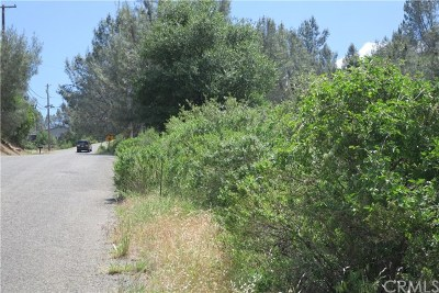 Kelseyville Residential Lots & Land For Sale: 4883 Iroquois