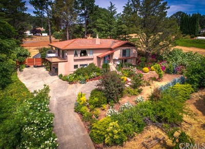 Kelseyville Single Family Home For Sale: 1615 Eastlake Drive