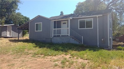 Clearlake Single Family Home For Sale: 15240 Lakeview Avenue
