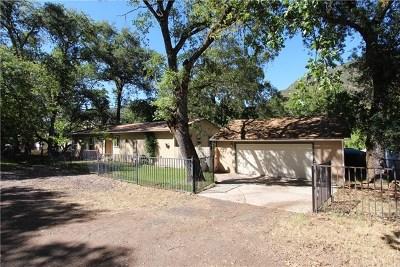 Upper Lake Single Family Home For Sale: 5120 Laurel Dell Road