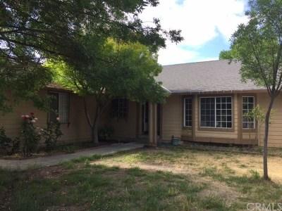 Kelseyville Single Family Home For Sale: 4737 Louis Lane