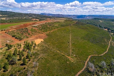 Middletown Residential Lots & Land Active Under Contract: 20477 Vineyard Drive