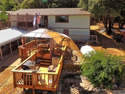 Kelseyville Single Family Home For Sale: 3480 Bergesen Causeway