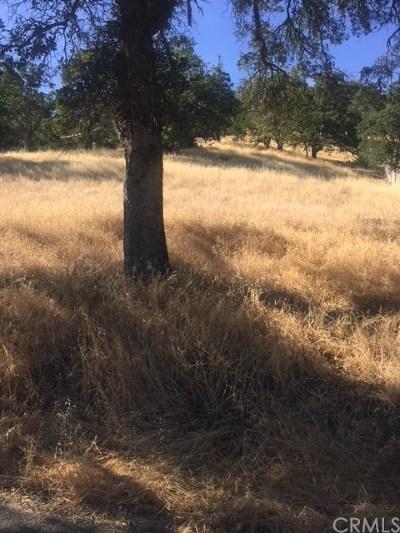 Clearlake Oaks Residential Lots & Land For Sale: 12704 Oakgrove Avenue