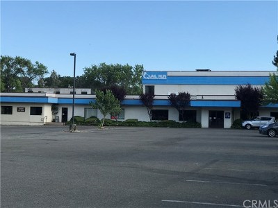 Lakeport CA Commercial For Sale: $1,950,000