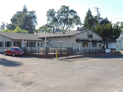 Lakeport Commercial For Sale: 2599 Lakeshore Boulevard