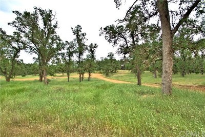 Clearlake Residential Lots & Land For Sale: 16343 39th Avenue