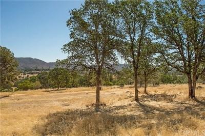 Middletown Residential Lots & Land For Sale: 20924 Jerusalem Grade