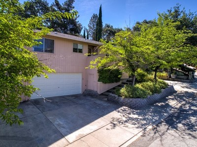 Lakeport Single Family Home For Sale: 837 14th Street