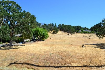 Hidden Valley Lake Residential Lots & Land For Sale: 19630 Donkey Hill Road