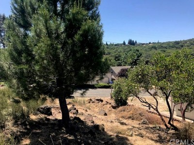 Kelseyville Residential Lots & Land For Sale: 9304 W Yaquima Drive W