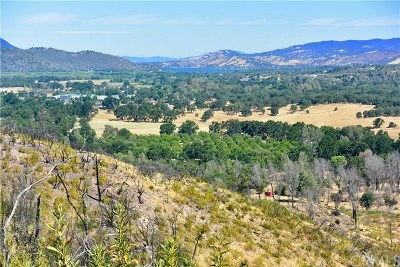 Lower Lake Residential Lots & Land For Sale: 10525 Wagner Road