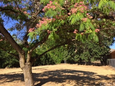 Lakeport Residential Lots & Land For Sale: 1585 S Main Street