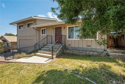 Lakeport CA Single Family Home For Sale: $285,000