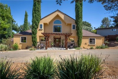 Kelseyville Single Family Home For Sale: 8210 Orchard Drive