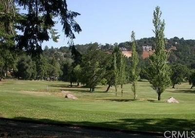 Kelseyville Residential Lots & Land For Sale: 2912 Buckingham Drive