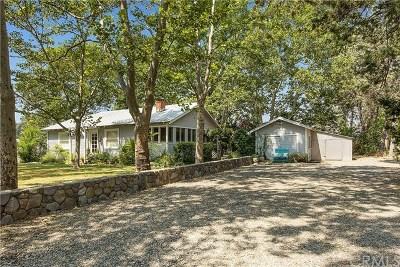 Middletown Single Family Home For Sale: 21051 Barnes Street