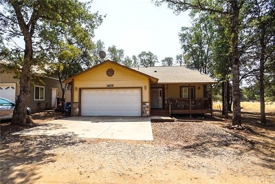Clearlake Single Family Home For Sale: 16275 19th Avenue