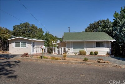 Lakeport Single Family Home For Sale: 650 9th Street
