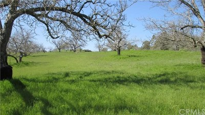 Lakeport Residential Lots & Land For Sale: 335 Lakeview Road