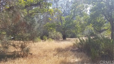 Kelseyville Residential Lots & Land For Sale: 6845 Bergesen Drive
