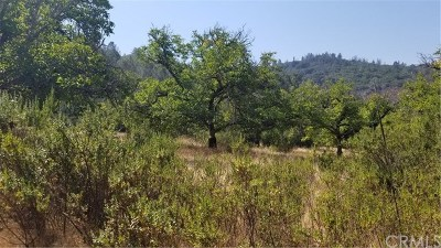 Kelseyville Residential Lots & Land For Sale: 6781 Bergesen Drive