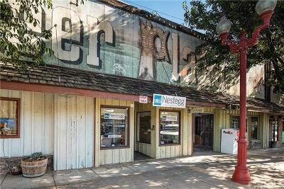 Kelseyville Commercial For Sale: 3970 Main Street