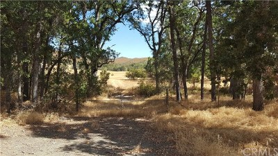 Lower Lake Residential Lots & Land For Sale: 26100 Morgan Valley Road
