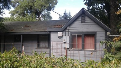 Chico Single Family Home For Sale: 1012 W 9th Street W