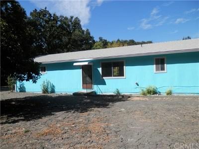 Kelseyville CA Single Family Home For Sale: $305,000