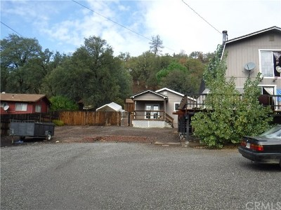 Lake County Single Family Home For Sale: 17301 Cache Creek Road