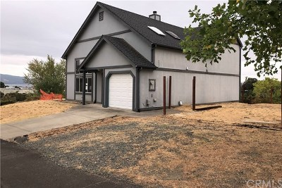 Lakeport CA Single Family Home For Sale: $199,000