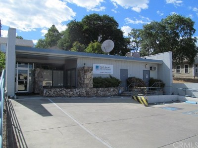 Lakeport Commercial For Sale: 325 N Forbes St Street
