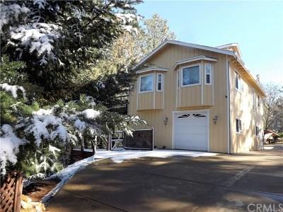 Lake County Single Family Home For Sale: 9527 Venturi Drive