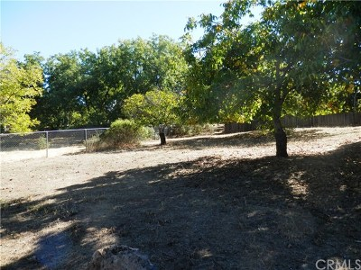 Kelseyville Residential Lots & Land For Sale: 9419 Pawnee Trail